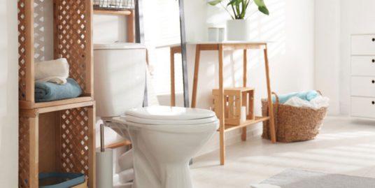 5 วิธีป้องกันงูในชักโครก รู้ไว้ปลอดภัย ใช้ห้องน้ำได้อย่างสบายใจ