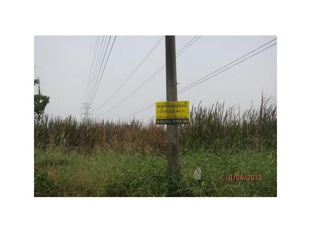 ขายที่ดิน รังสิตคลอง 3 อ.คลองหลวง จ.ปทุมธานี