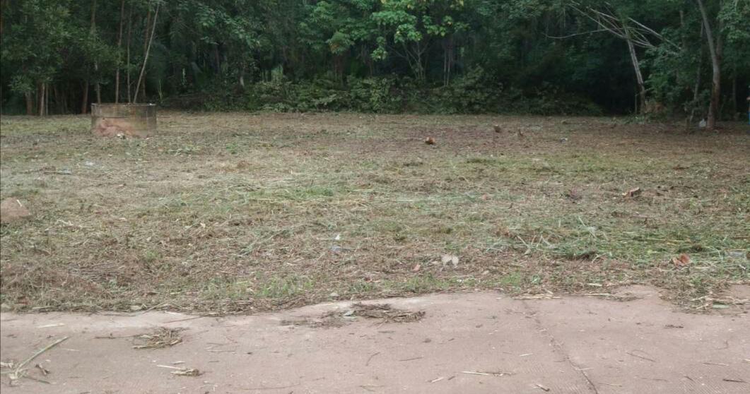 ขายที่ดิน 283 ตารางวา ใกล้ โรงเรียนกำเนิดวิทย์ ป่ายุบใน วังจันทร์ ระยอง