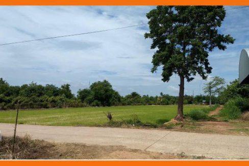 ขายที่ดินเปล่าติดถนนใหญ่ เนื้อที่ 8 ไร่ 2 งาน อำเภอวังทอง จังหวัดพิษณุโลก