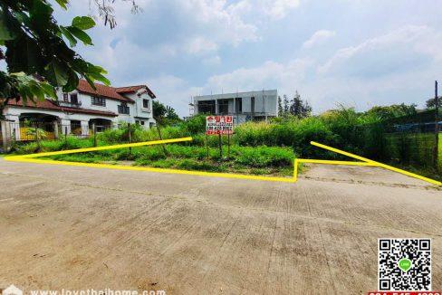 ขายที่ดินเปล่าถนนพุทธมณฑลสาย2 หมู่บ้านชัยพฤกษ์ บางแวก 122ตรว