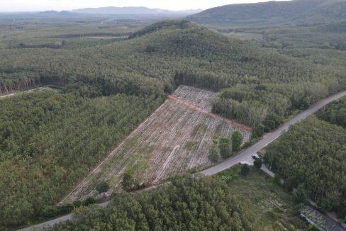 ขายที่ดิน 7 ไร่ 1 งาน 68 ตรว. วิวภูเขา ติดถนนลาดยาง ใกล้โครงการวังจันทร์วัลเลย์ ป่ายุบใน วังจันทร์ ระยอง