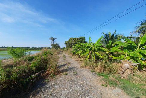 ขายที่ดิน 10 ไร่ พื้นที่สวนมะพร้าวน้ำหอมและบ่อเลี้ยงปลา อ.บางน้ำเปรี้ยว จ.ฉะเชิงเทรา