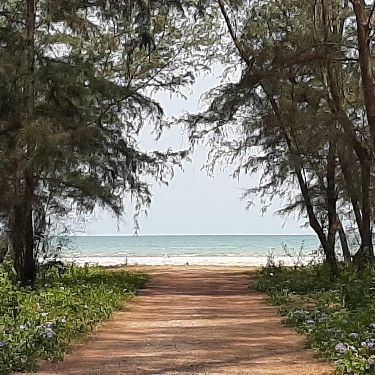 ขายถูก ที่ดินติดทะเล ระยอง ชายหาดเป็นส่วนตัว 2 ไร่ บ้านในฝันของครอบครัว