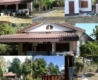 ขายบ้านสวยพร้อมที่ดิน ด่วนๆ ติดถนนลาดยาง เนื้อที่ 274 ตารางวา