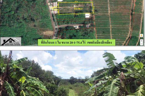 ขายที่ดิน 3-3-50.4ไร่ บ้านด่านหยิด ผังสีเหลือง 16.5ลบ. ลดเหลือ 9.5 ลบ.