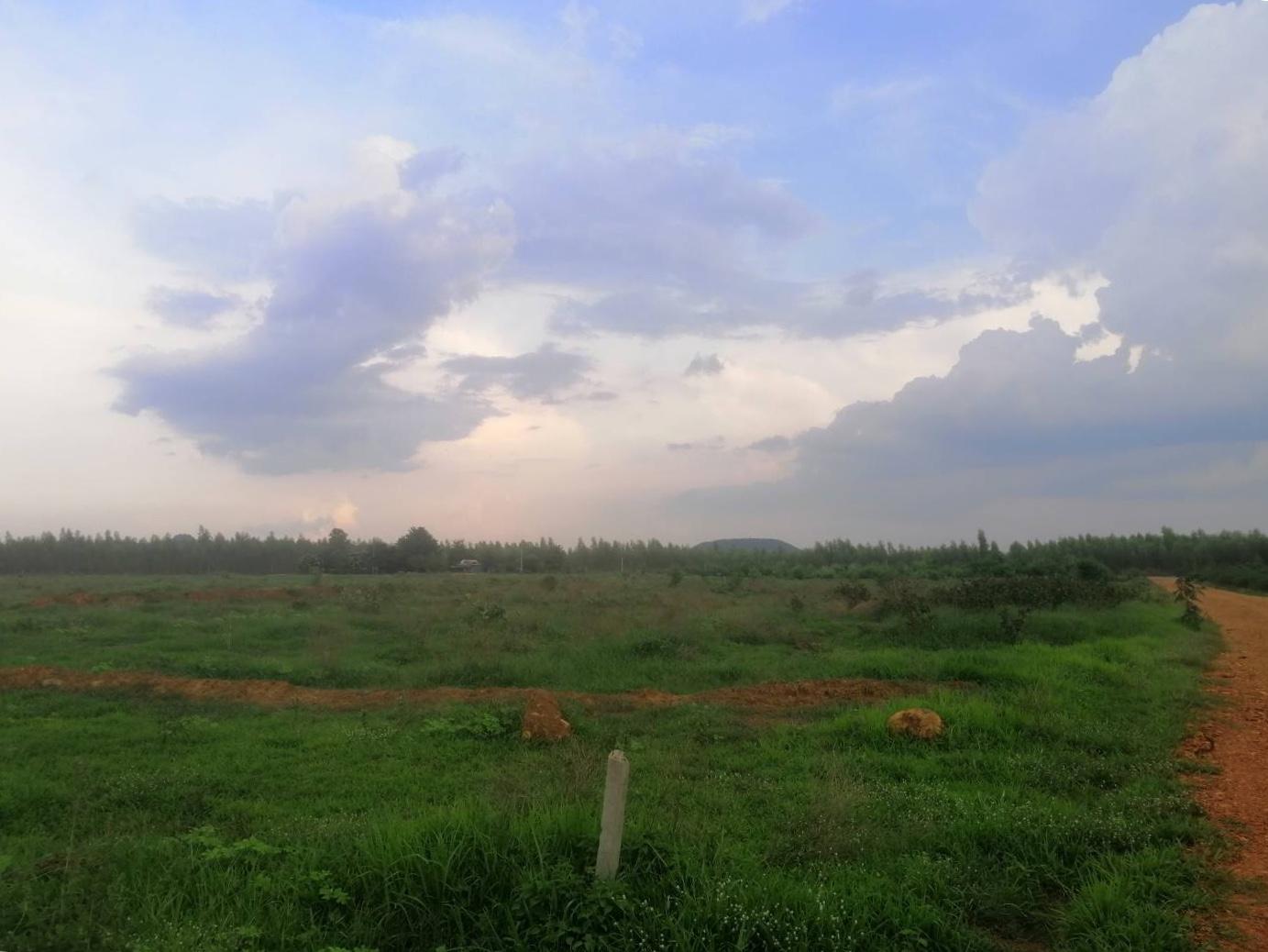 ที่ดินเปล่า 10 ไร่ ต.หลุมรัง อ.บ่อพลอย จ.กาญจนบุรี